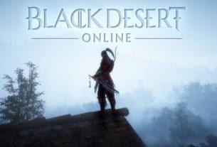 Black Desert Ninja